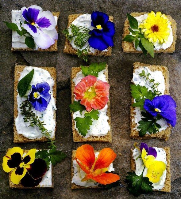 Угощения со съедобными цветами
