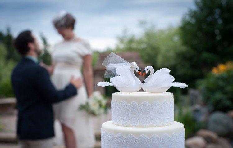 Свадебный торт с мастикой и лебедями
