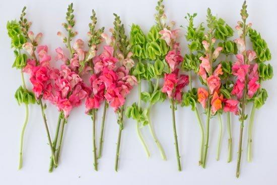 Подготовьте цветы