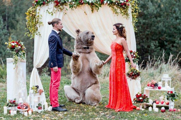 Свадьба для смелых молодоженов