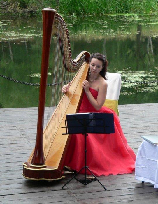 Картинки музыкантов с музыкальными инструментами, очередь людей открытка