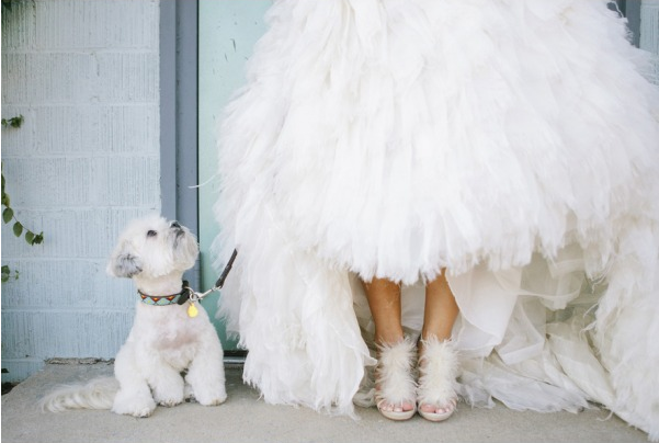monique-lhuillier-dress-and-badgley-mischka-shoes-feathers-white-wedding